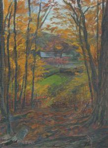 Arboretum Autumn Overlook