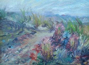 Barrel Cactus Overlook 2