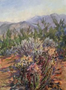 Barrel Cactus Overlook