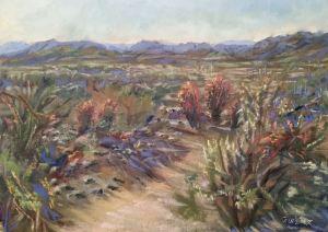 Apache Wash Overlook - Barrel Cactus
