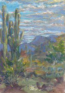 Cave Creek Saguarro